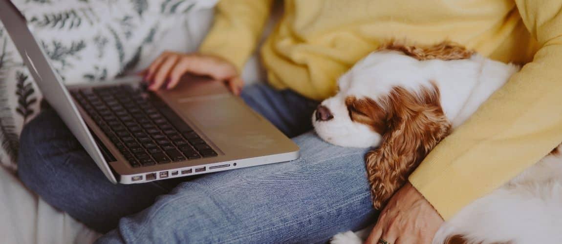 Une entrepreneuse se rend compte que faire son site web en solo, ça coûte cher